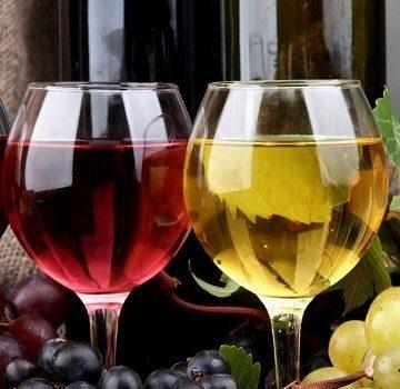 vino-img-900x350